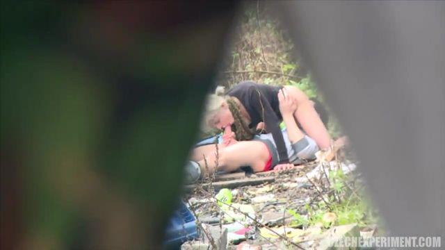 Похотливая парочка решила уединиться в лесу и заняться страстным сексом